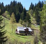 Javoří důl Pec pod Sněžkou